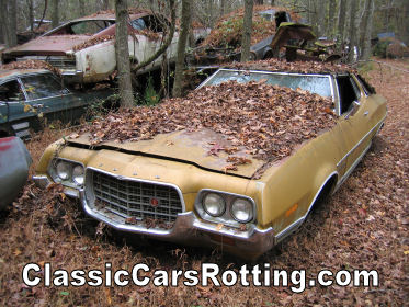 the webmaster says this is a 1972 ford grand torino