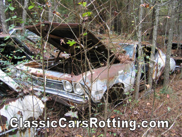 1968 Chevrolet Chevelle Ss 396 Junk Car Removal Get An