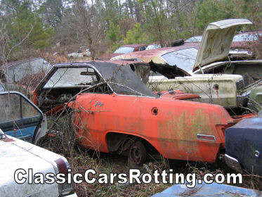 Tour of the Worlds Largest Old Cars Junkyard
