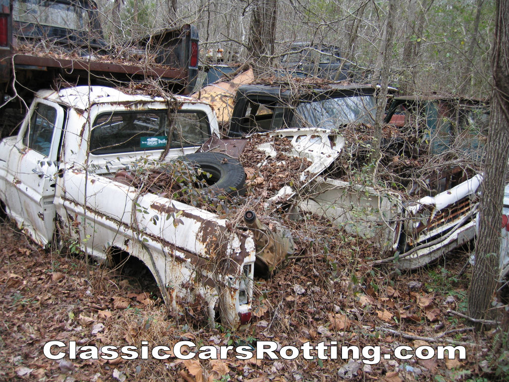 Classic Cars Rotting The Fordification Com Forums